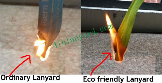 compare ordinary and Eco Friendly